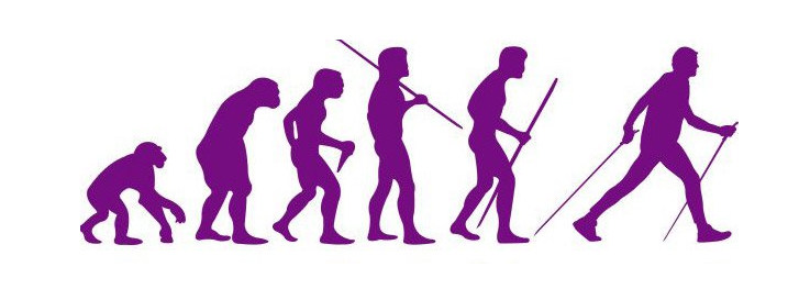 skand hodba evolution